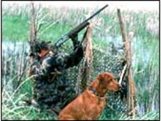 Kıbrıs'ta avcılar birbirini avladı